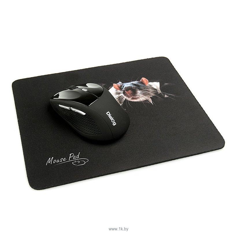 Фотографии Dialog PM-H15 Mouse