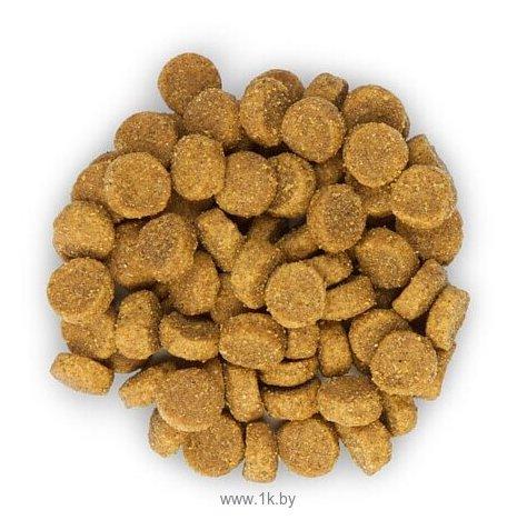 Фотографии Hill's Science Plan Feline Adult Optimal Care Chicken (10 кг)