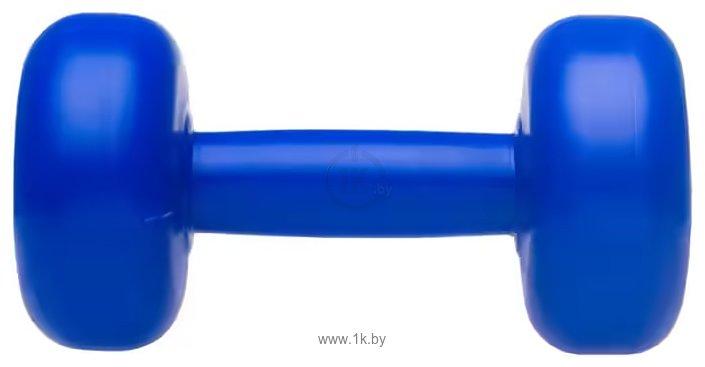 Фотографии Владспортпром 2x1 кг (синий)