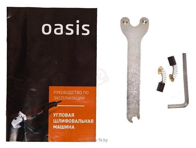 Фотографии Oasis AG-110/125