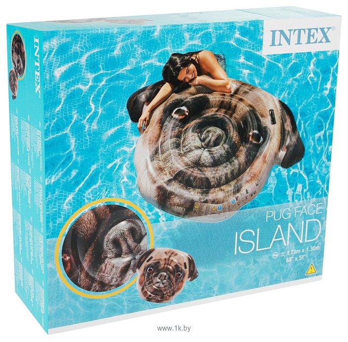Фотографии Intex 58785