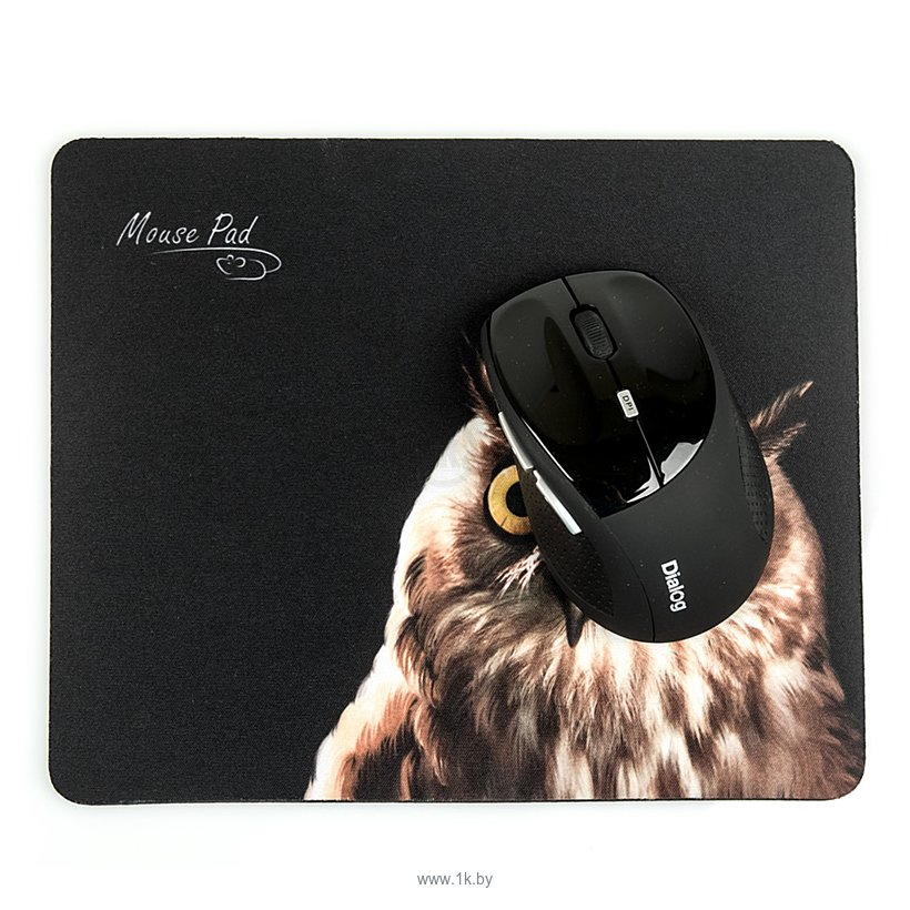 Фотографии Dialog PM-H15 Owl