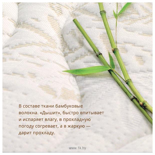 Фотографии Плитекс Bamboo Nature 60x119 (БН-119-01)