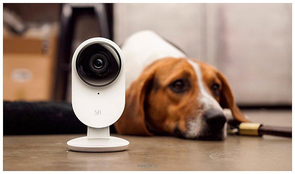Фотографии Xiaomi YI Home Camera 2