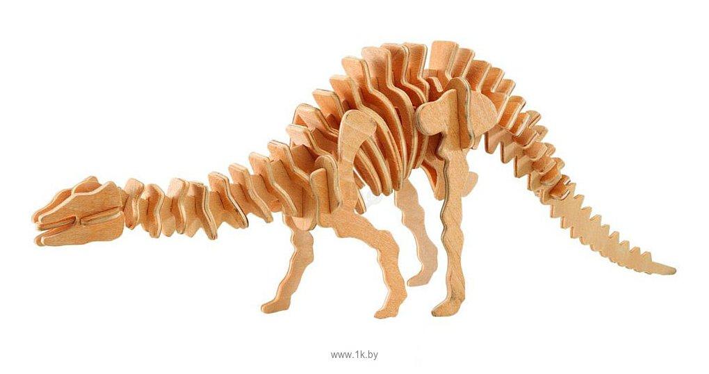 Фотографии Чудо-Дерево Апатозавр (малый)
