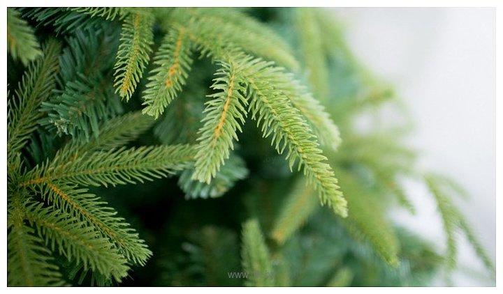 Фотографии Green Trees Форесто премиум 1.5 м