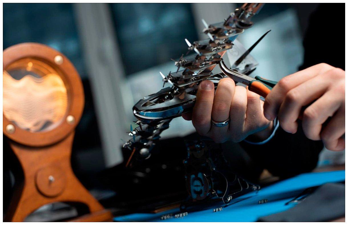 Фотографии Time for Machine Небесный Геркулес