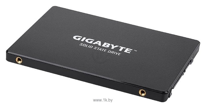 Фотографии GIGABYTE SSD 256GB (GP-GSTFS31256GTND)