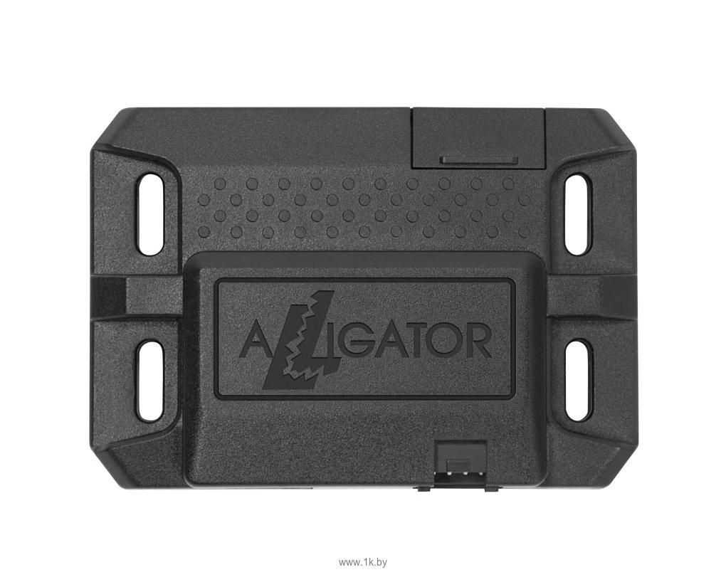Фотографии Alligator Online