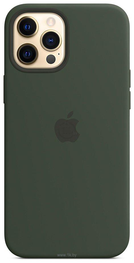 Фотографии Apple MagSafe Silicone Case для iPhone 12 Pro Max (кипрский зеленый)