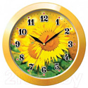 Настенные часы Тройка 11150154