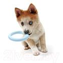 Игрушка для животных Petit Lola / 309/449356