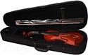 Скрипка Aileen VG-200 4/4 со смычком в футляре
