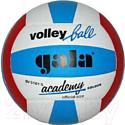 Мяч волейбольный Gala Sport Academy / BV5181S