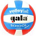 Мяч волейбольный Gala Sport School Foam Colou / BV5511S