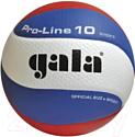 Мяч волейбольный Gala Sport Pro-Line 10 / BV5581S