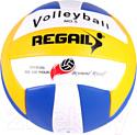 Мяч волейбольный Darvish RVB-001 / DV-S-28
