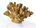 Статуэтка Mondex Коралл HTOX2261