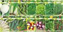 Набор семян АПД Витаминный салат / A105091