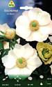 Семена цветов АПД Анемона. Де каен Брайд / A30005