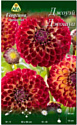 Семена цветов АПД Георгина Джоуэй Джошуа / A30070