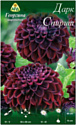 Семена цветов АПД Георгина Дарк Спирит / A30068