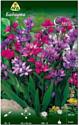 Семена цветов АПД Бабиана смесь / A30926
