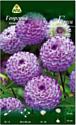 Семена цветов АПД Георгина Генуя / A30067
