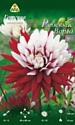 Семена цветов АПД Георгина Ребеккас Ворлд / A30096