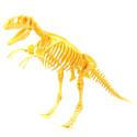"""HYQ, Китай Конструктор HYQ """"Скелет динозавра"""", 7671-7676"""