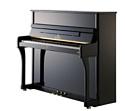 Пианино Seiler 122 Traditio WP