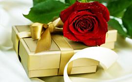 Новогодние праздники: выбираем подарки для любимых